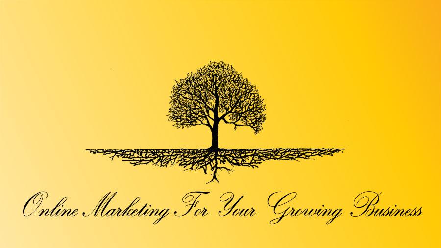 Online marketing in ghaziabad